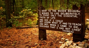Thoreaus_quote_near_his_cabin_site,_Walden_Pond